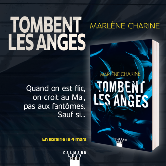 annonce-parution-tombent-anges2